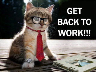 A cat wearing glasses and a tie and the slogan Get Back To Work
