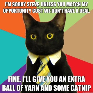 Cat Opportunity Cost