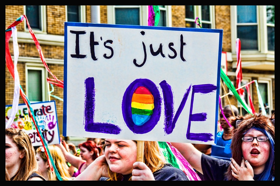 A woman holds a poster that reads It's Just Love at a gay pride march