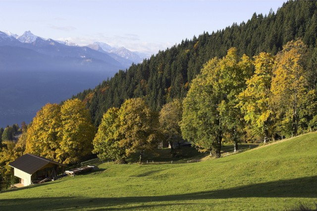 Switzerland - Autumn in Bernese Oberland