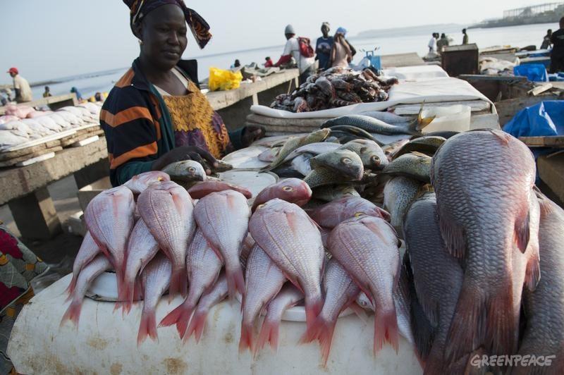 A woman at Soumbedioune fish market.