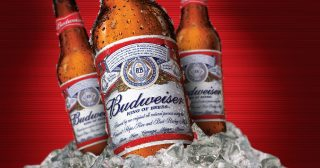 Three bottles of Budweiser