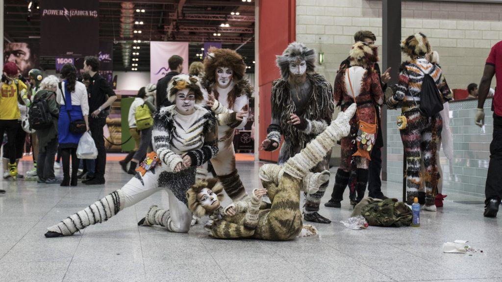 Cats posing at ComiCon 2016.