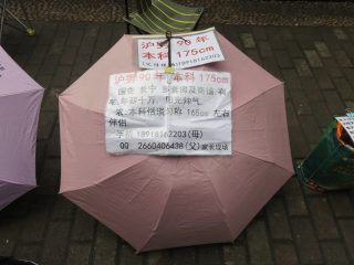 Mr Zhang's umbrella at the Shanghai marriage market.
