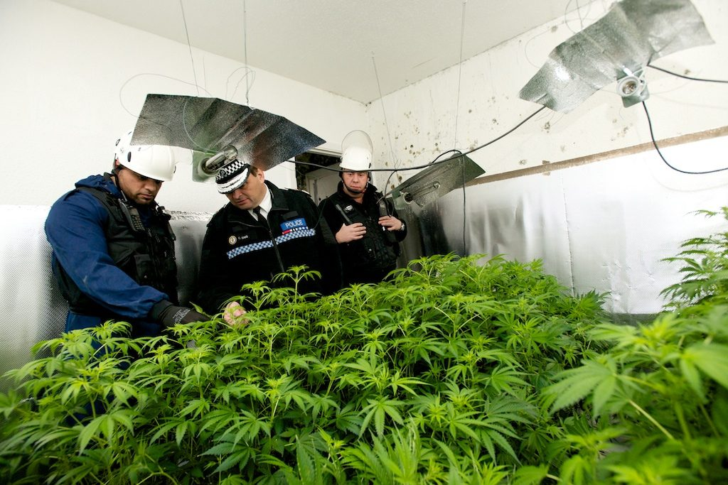 West Midlands Police Investigating Cannabis Farm