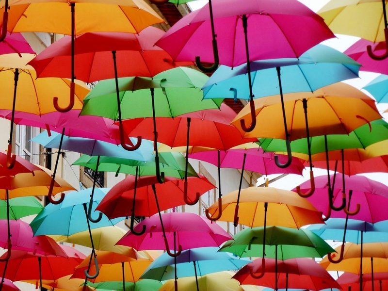 umbrella rain