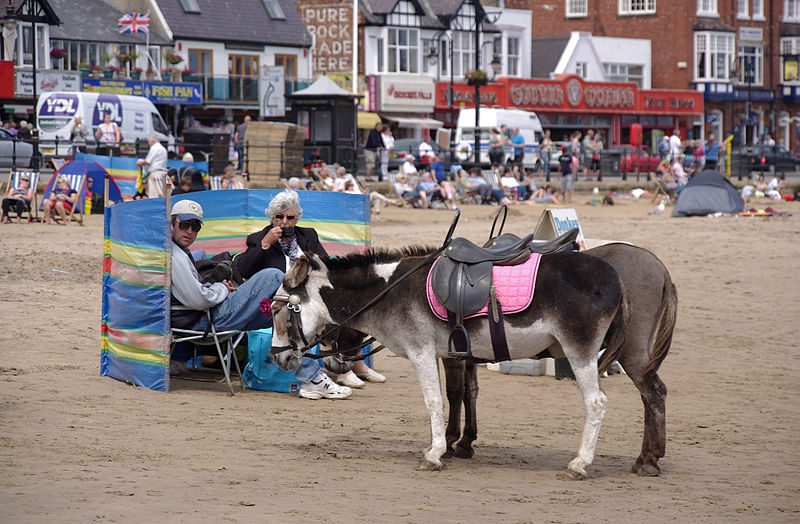 donkey beach uk