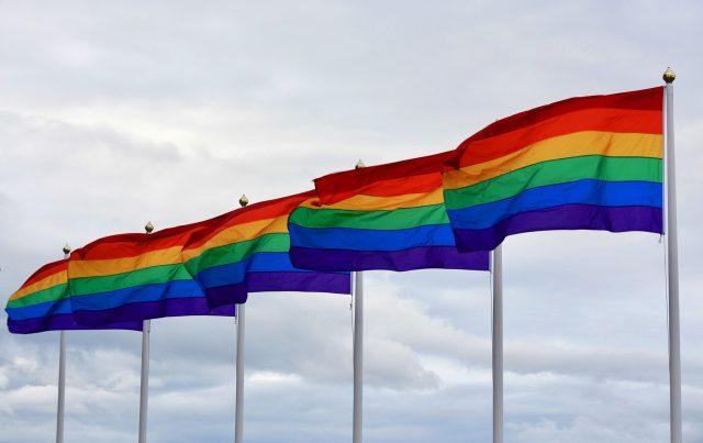 Pride Day Flag Rainbow Lesbian Pride Color Lgbt