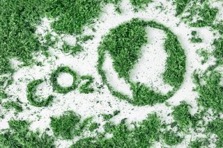 Lettering CO2 and drawing planet earth from grass and moss. The concept of ecology, air pollution and global warming.